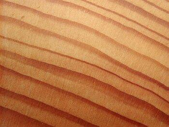 pin sylvestre pinus sylvestris chantillon de bois de pin photo of a sample of scot 39 s pine wood. Black Bedroom Furniture Sets. Home Design Ideas